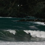 """Surfing in Levanto"""